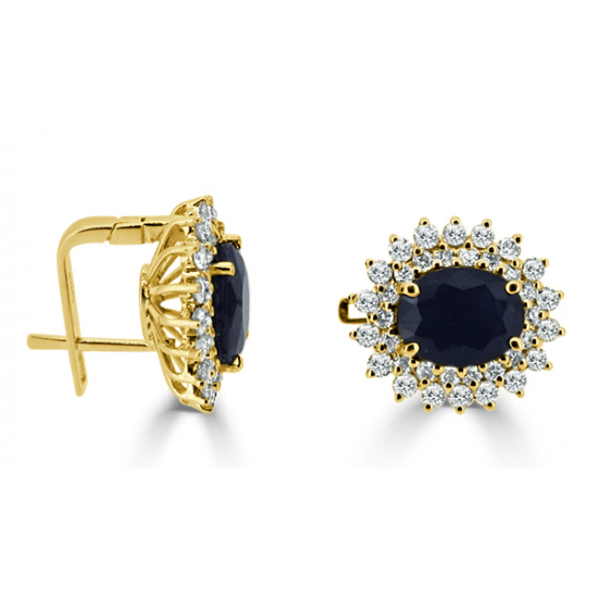 Diana design earrings-B05260