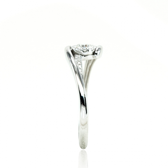Slithering diamond Park-B17733